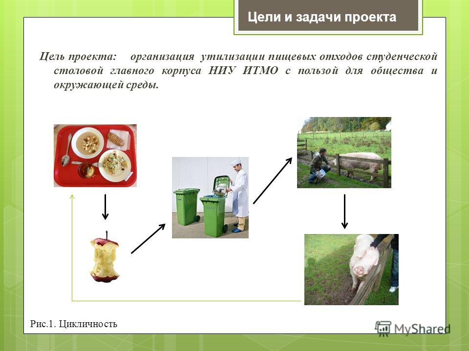 Цели и задачи проекта Цель проекта: организация утилизации пищевых отходов студенческой столовой главного корпуса НИУ ИТМО с пользой для общества и окружающей среды. Рис.1. Цикличность