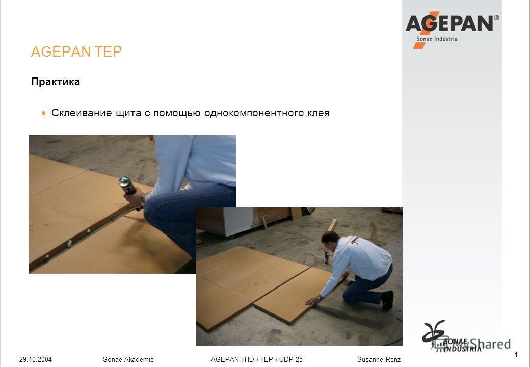 29.10.2004Sonae-Akademie AGEPAN THD / TEP / UDP 25 Susanne Renz 1 AGEPAN TEP Практика Склеивание щита с помощью однокомпонентного клея