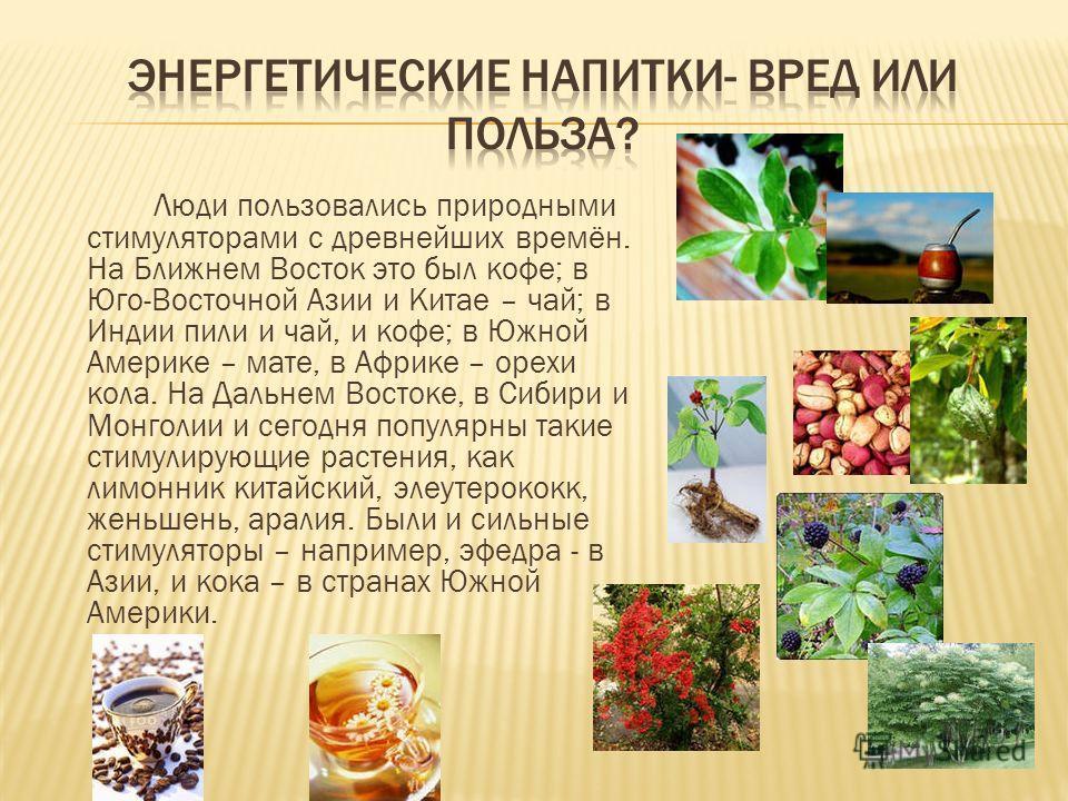 Люди пользовались природными стимуляторами с древнейших времён. На Ближнем Восток это был кофе; в Юго-Восточной Азии и Китае – чай; в Индии пили и чай, и кофе; в Южной Америке – мате, в Африке – орехи кола. На Дальнем Востоке, в Сибири и Монголии и с