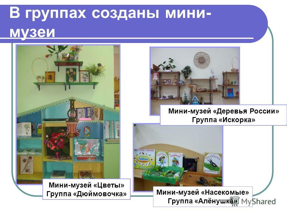В группах созданы мини- музеи Мини-музей «Деревья России» Группа «Искорка» Мини-музей «Насекомые» Группа «Алёнушка» Мини-музей «Цветы» Группа «Дюймовочка»