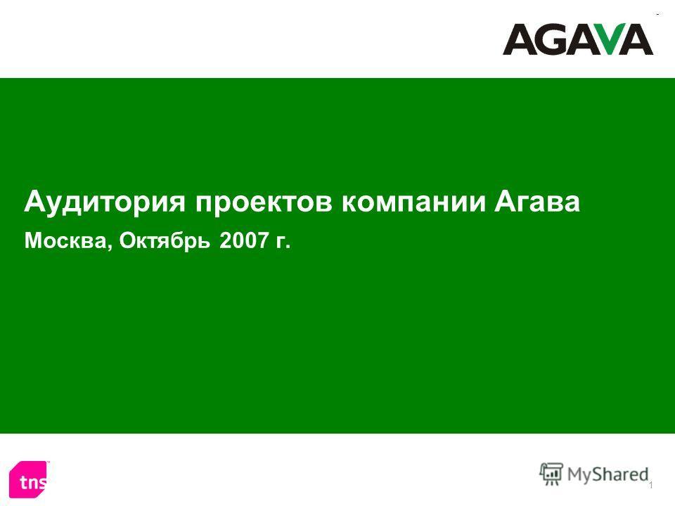 1 Аудитория проектов компании Агава Москва, Октябрь 2007 г.