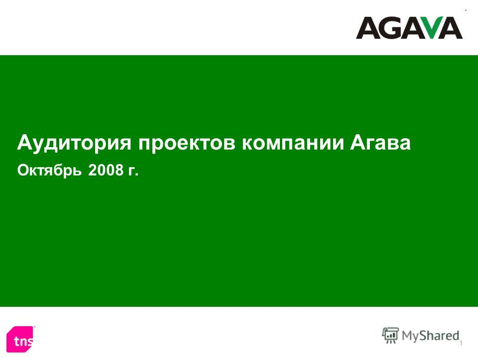 1 Аудитория проектов компании Агава Октябрь 2008 г.