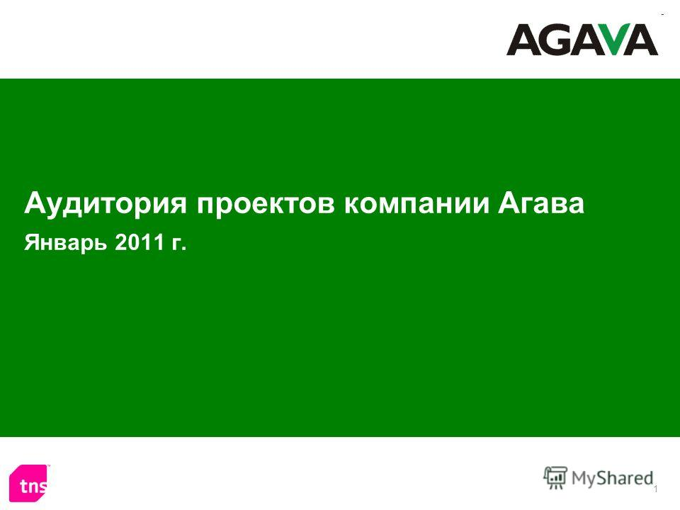 1 Аудитория проектов компании Агава Январь 2011 г.