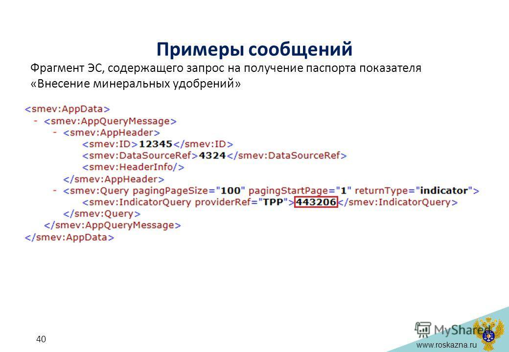 www.roskazna.ru Примеры сообщений Фрагмент ЭС, содержащего запрос на получение паспорта показателя «Внесение минеральных удобрений» 40