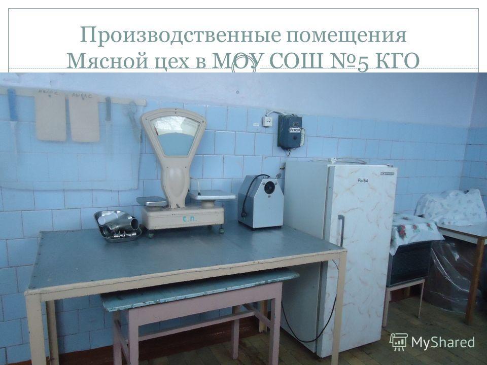 Производственные помещения Мясной цех в МОУ СОШ 5 КГО