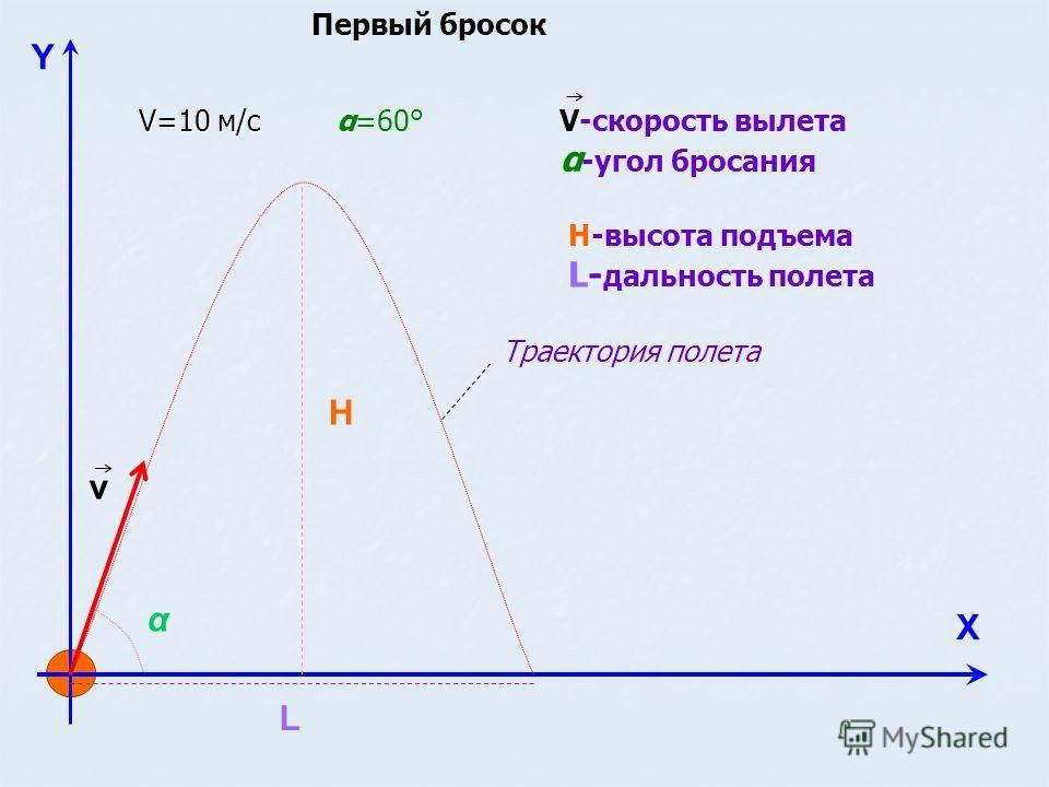Y Х v H L α V-скорость вылета α -угол бросания Н-высота подъема L- дальность полета Траектория полета V=10 м/с α=60° Первый бросок