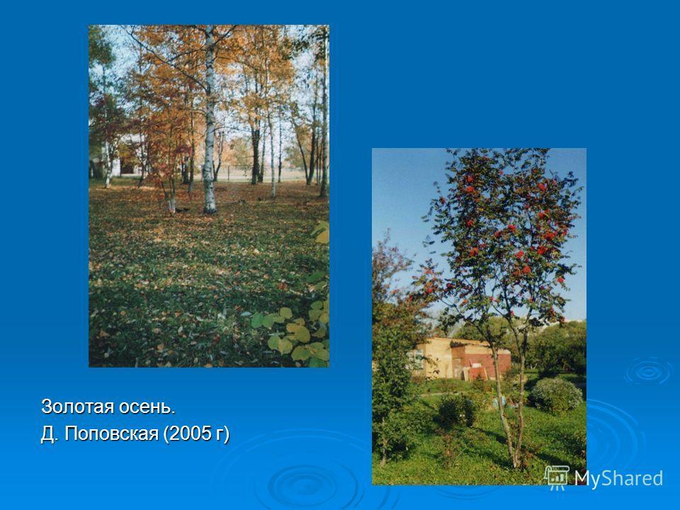 Золотая осень. Д. Поповская (2005 г)