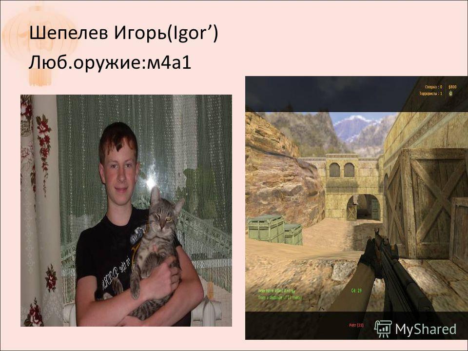 Шепелев Игорь(Igor) Люб.оружие:м4а1