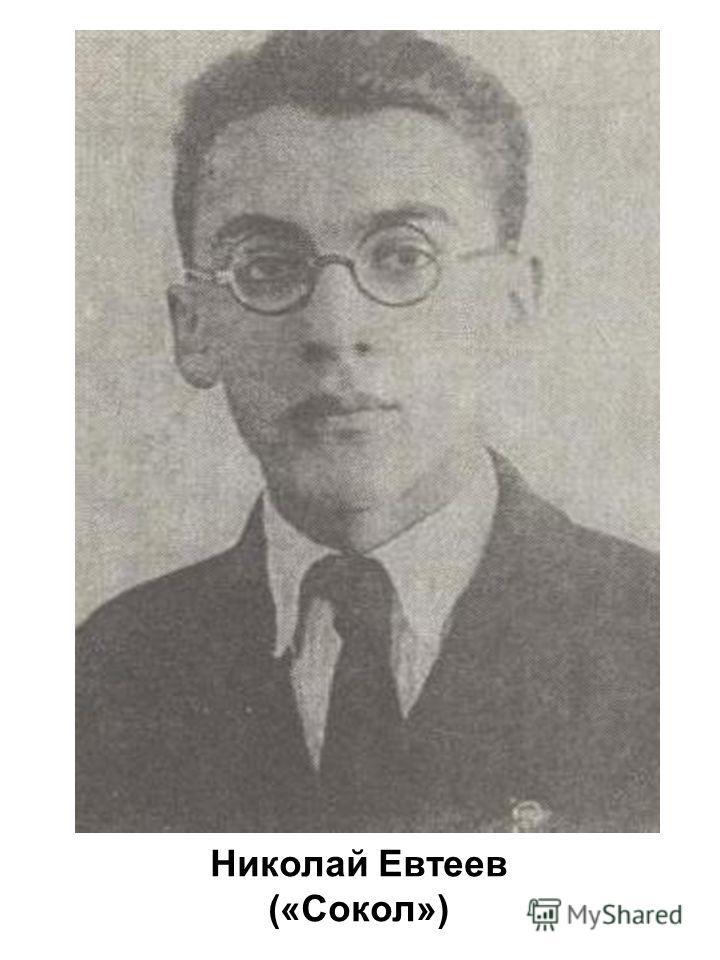 Николай Евтеев («Сокол»)