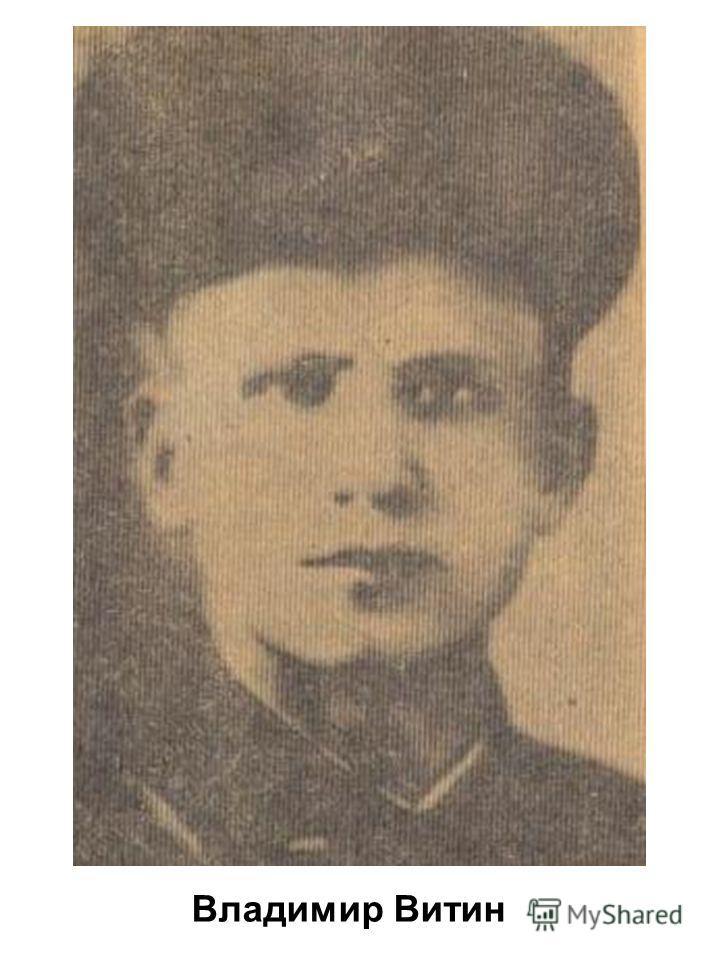Владимир Витин