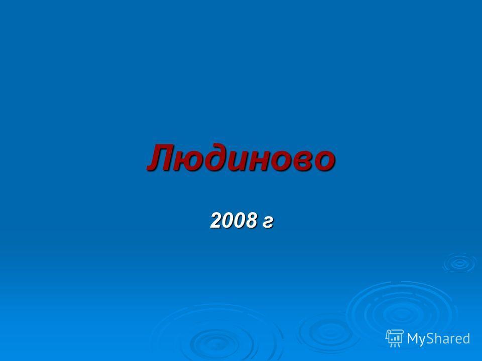 Людиново 2008 г