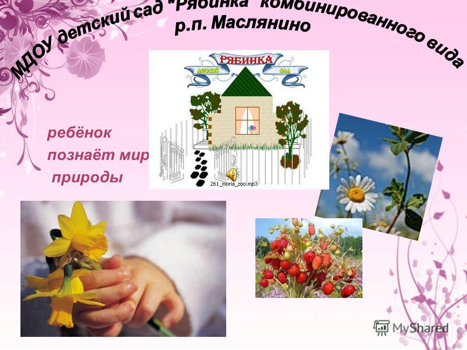 Презентация на тему Ребёнок познаёт мир природы Экологическое  1 ребёнок познаёт мир природы