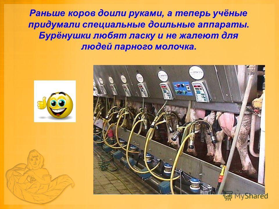 Раньше коров доили руками, а теперь учёные придумали специальные доильные аппараты. Бурёнушки любят ласку и не жалеют для людей парного молочка.