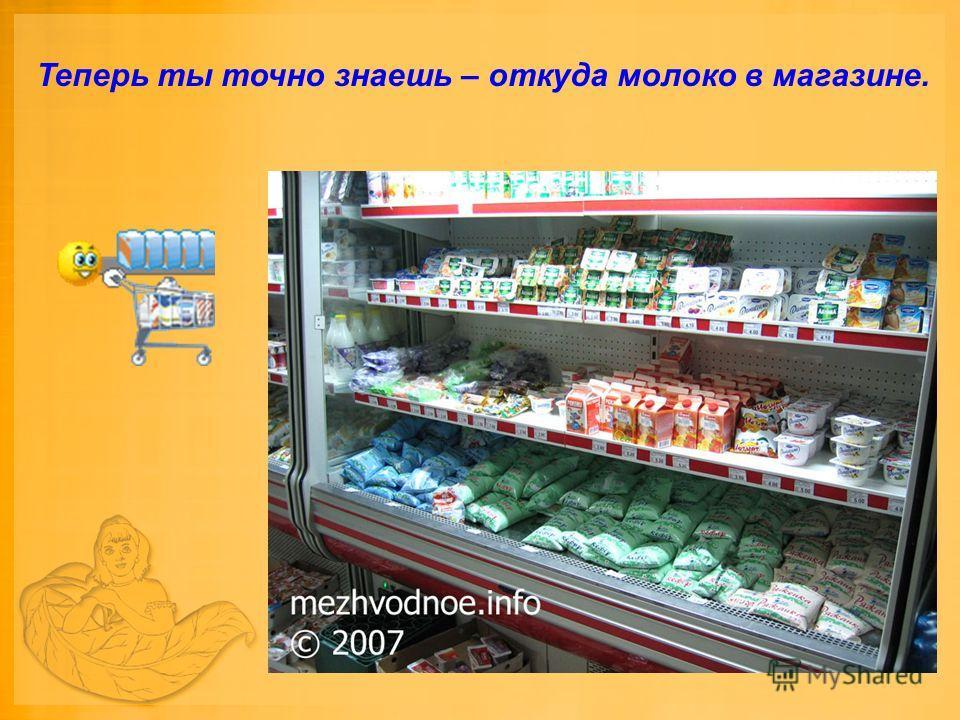 Теперь ты точно знаешь – откуда молоко в магазине.