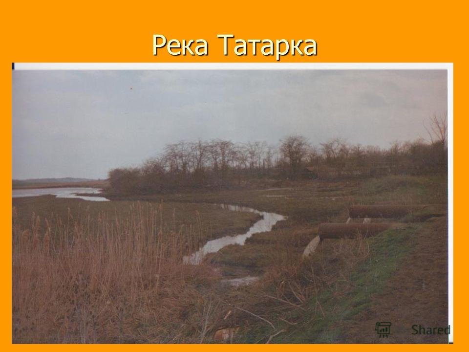 Река Татарка