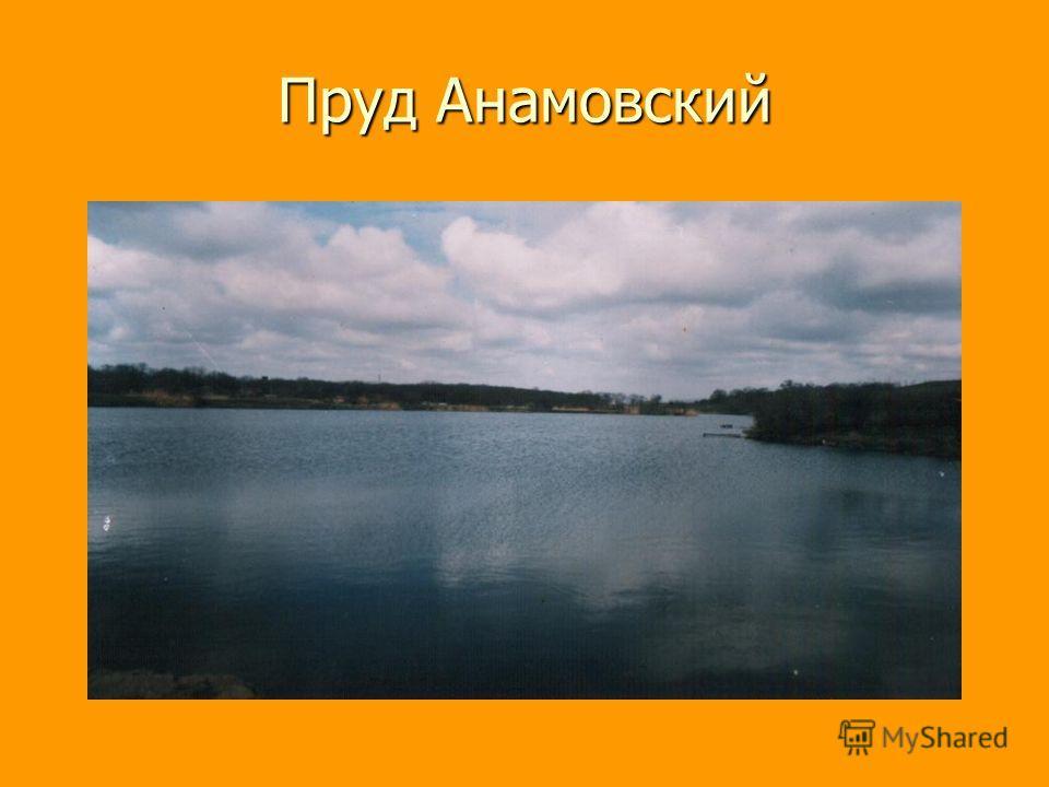 Пруд Анамовский