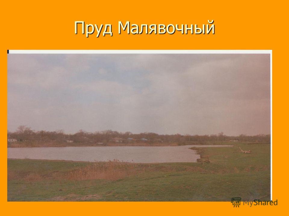 Пруд Малявочный