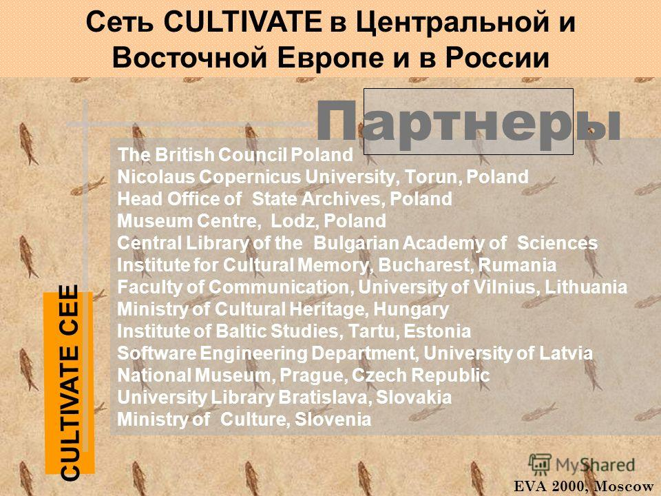 The British Council Poland Nicolaus Copernicus University, Torun, Poland Head Office of State Archives, Poland Museum Centre, Lodz, Poland Central Library of the Bulgarian Academy of Sciences Institute for Cultural Memory, Bucharest, Rumania Faculty