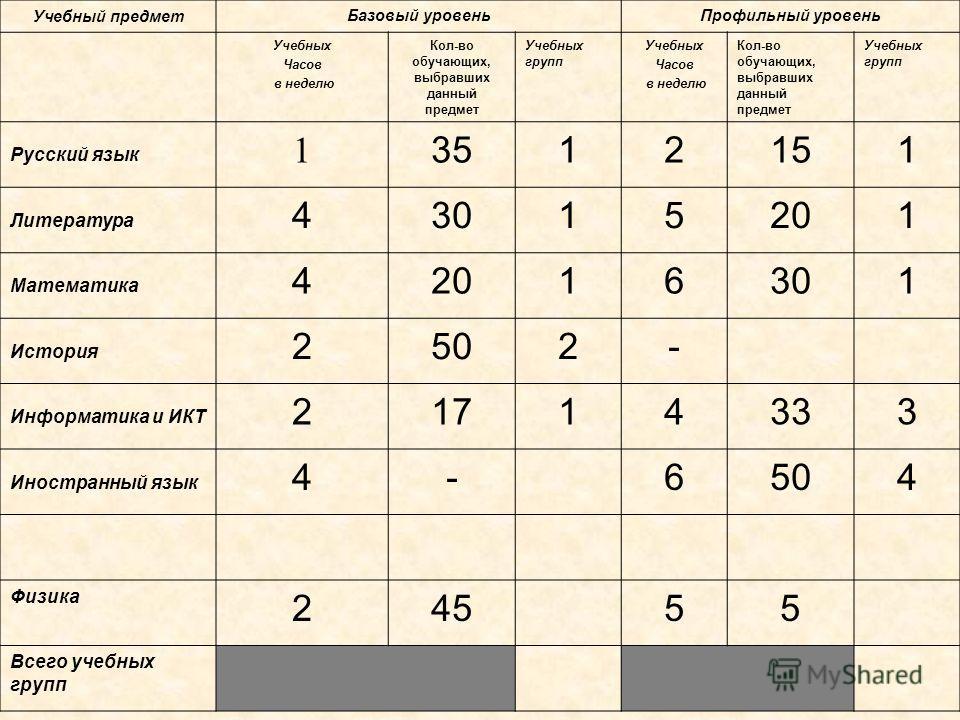 Организация профильного обучения с предоставлением выбора на основе индивидуального учебного плана компьютерная программа «ИУП-профиль»