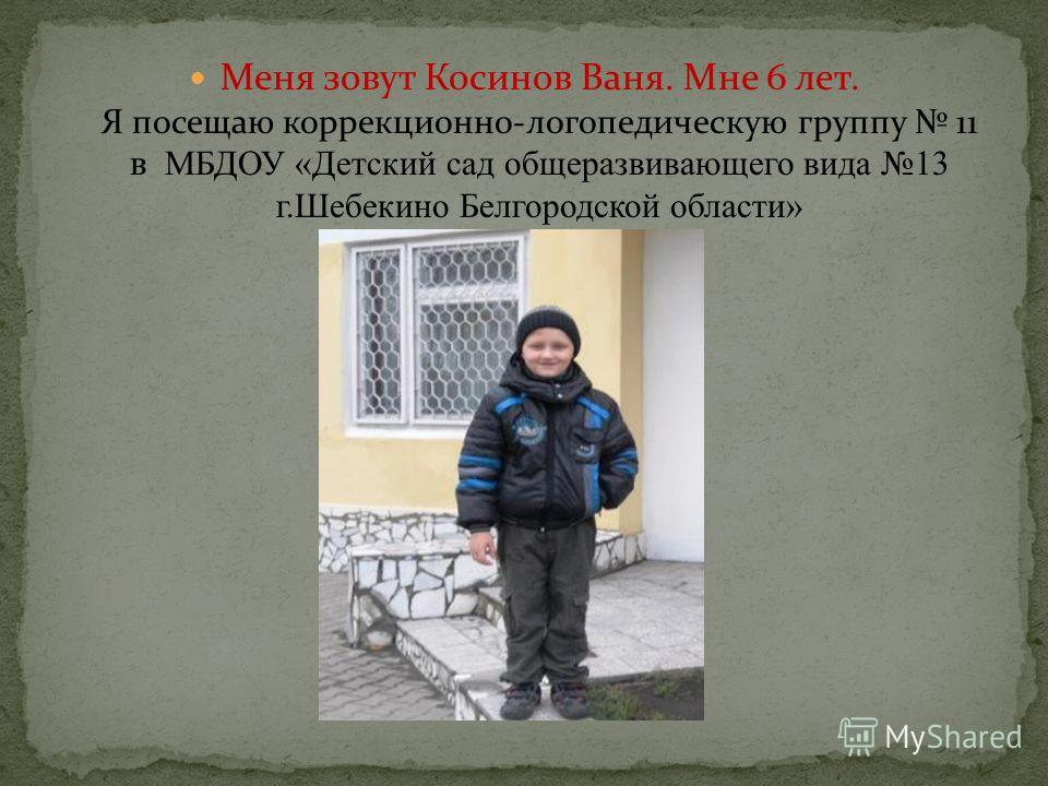 Меня зовут Косинов Ваня. Мне 6 лет. Я посещаю коррекционно-логопедическую группу 11 в МБДОУ «Детский сад общеразвивающего вида 13 г.Шебекино Белгородской области»