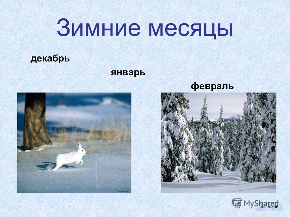 Зимние месяцы декабрь январь февраль содержание