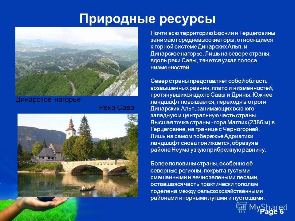 Free Powerpoint Templates Page 6 Природные ресурсы Почти всю территорию Боснии и Герцеговины занимают средневысокие горы, относящиеся к горной системе Динарских Альп, и Динарское нагорье. Лишь на севере страны, вдоль реки Савы, тянется узкая полоса н