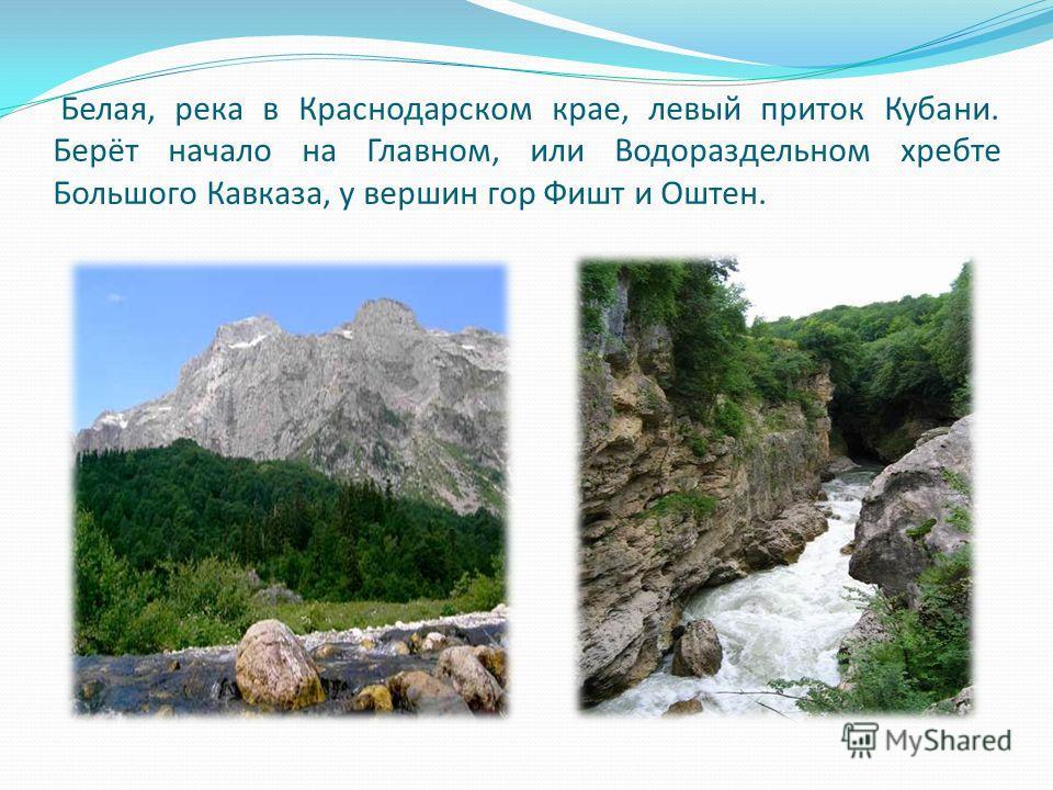 Белая, река в Краснодарском крае, левый приток Кубани. Берёт начало на Главном, или Водораздельном хребте Большого Кавказа, у вершин гор Фишт и Оштен.