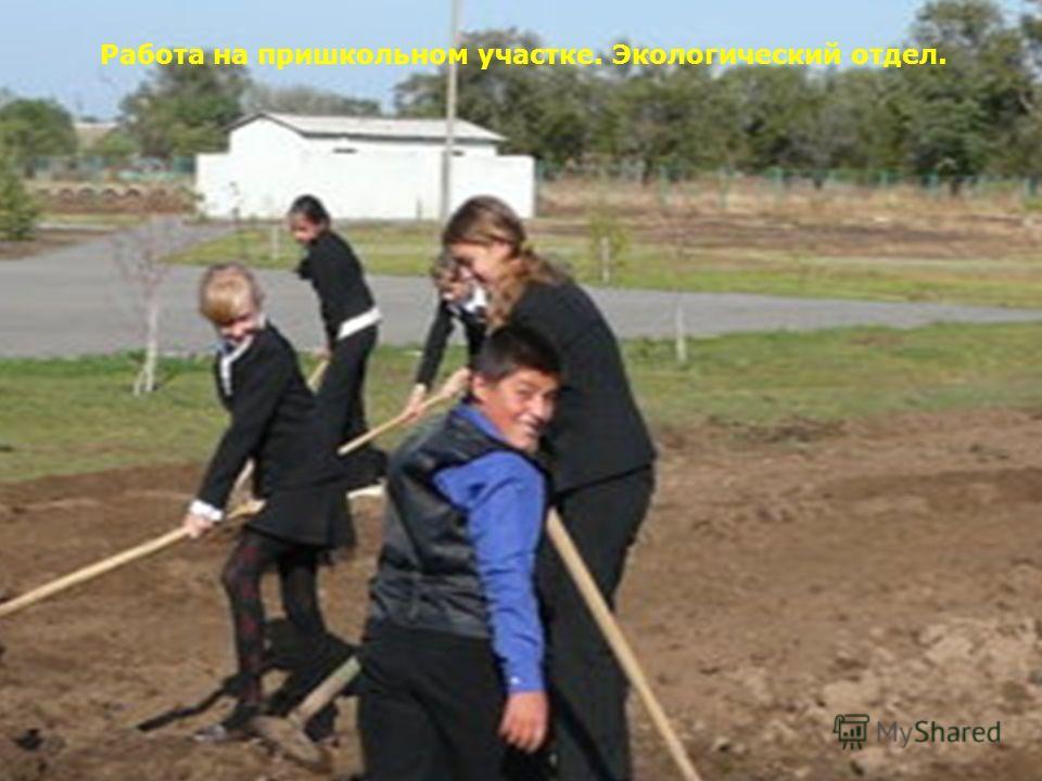 Работа на территории пришкольного участка. Экологический отдел. Работа на пришкольном участке. Экологический отдел.