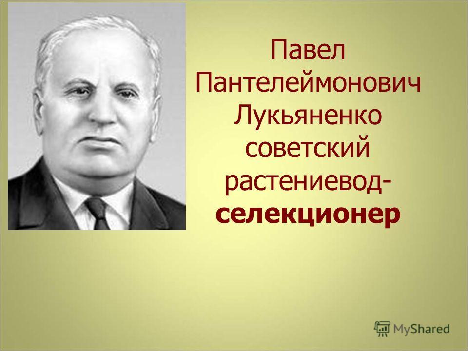 Павел Пантелеймонович Лукьяненко советский растениевод- селекционер