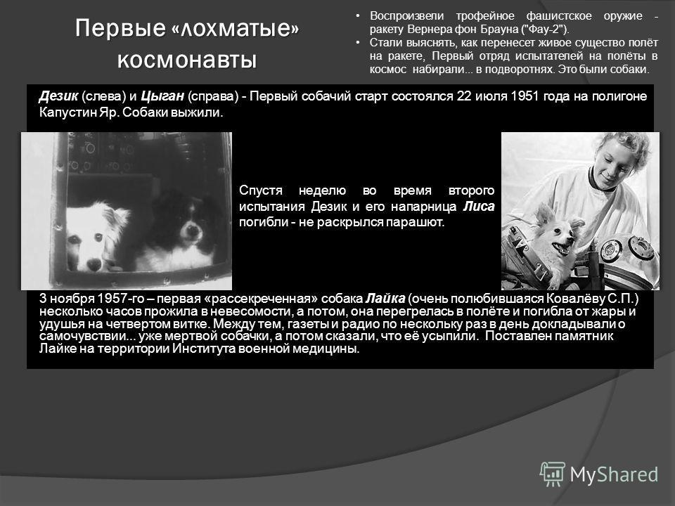 Первые «лохматые» космонавты Воспроизвели трофейное фашистское оружие - ракету Вернера фон Брауна (