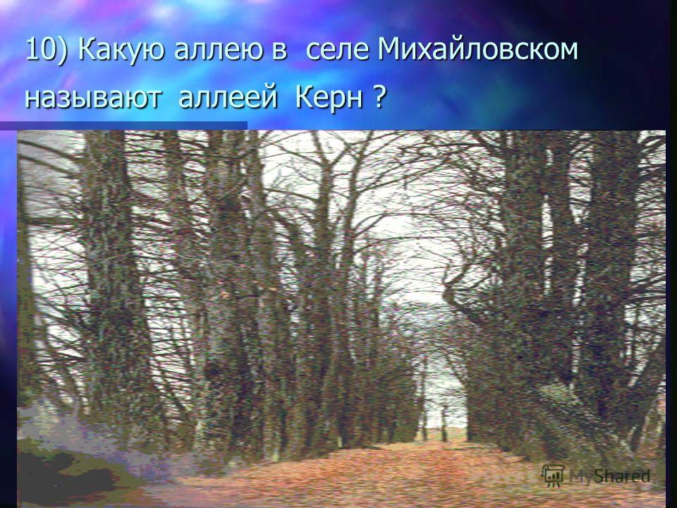 10) Какую аллею в селе Михайловском называют аллеей Керн ?