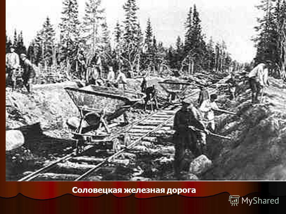 Соловецкая железная дорога