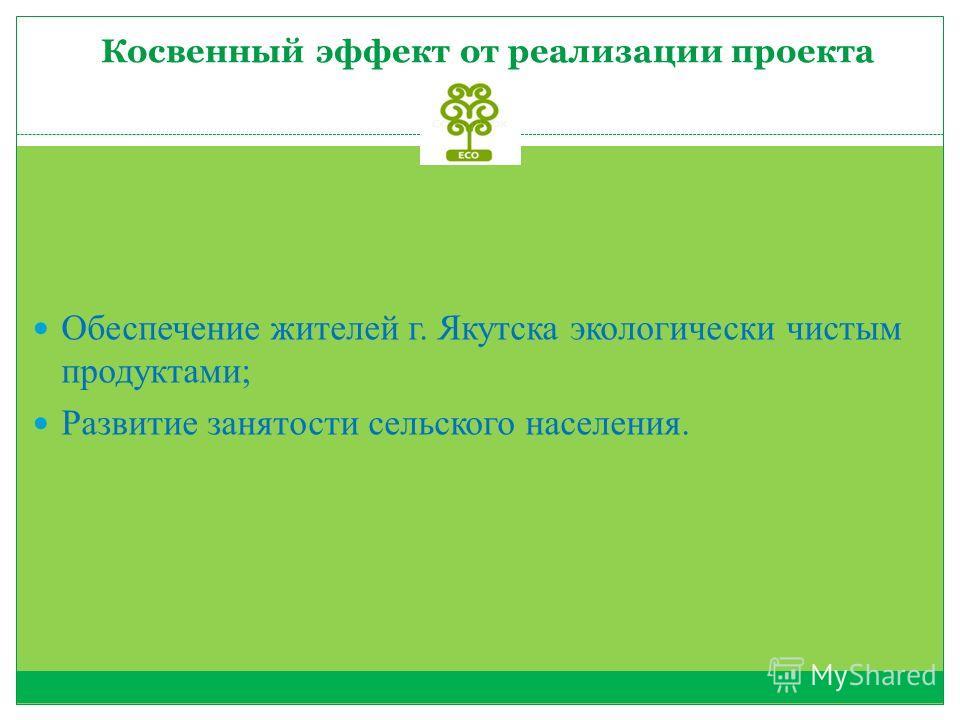 Косвенный эффект от реализации проекта Обеспечение жителей г. Якутска экологически чистым продуктами; Развитие занятости сельского населения.