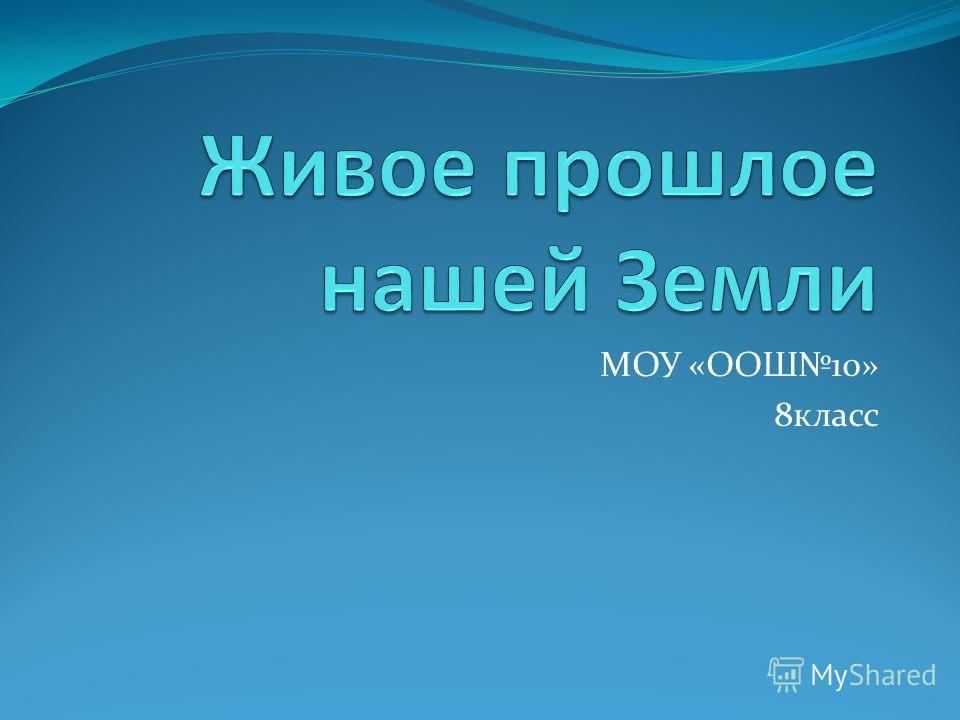 МОУ «ООШ10» 8класс