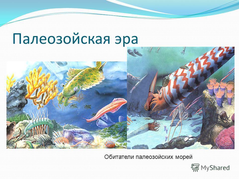 Палеозойская эра Обитатели палеозойских морей