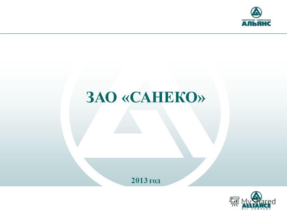 ЗАО «САНЕКО» 2013 год