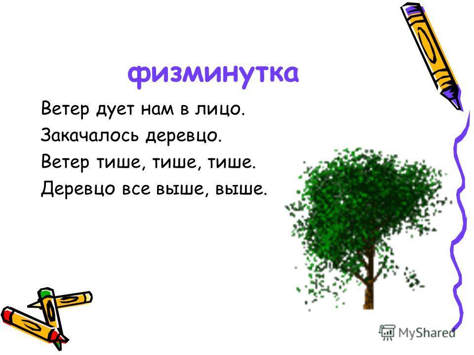 физминутка Ветер дует нам в лицо. Закачалось деревцо. Ветер тише, тише, тише. Деревцо все выше, выше.