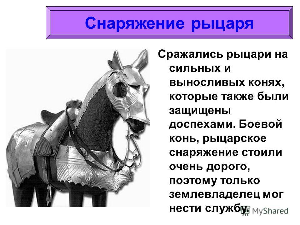 Сражались рыцари на сильных и выносливых конях, которые также были защищены доспехами. Боевой конь, рыцарское снаряжение стоили очень дорого, поэтому только землевладелец мог нести службу.