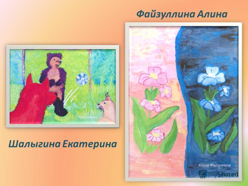 Файзуллина Алина Шалыгина Екатерина