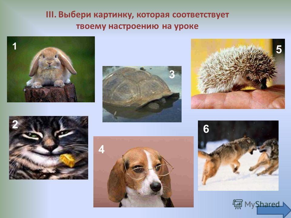 III. Выбери картинку, которая соответствует твоему настроению на уроке 1 2 3 4 5 6
