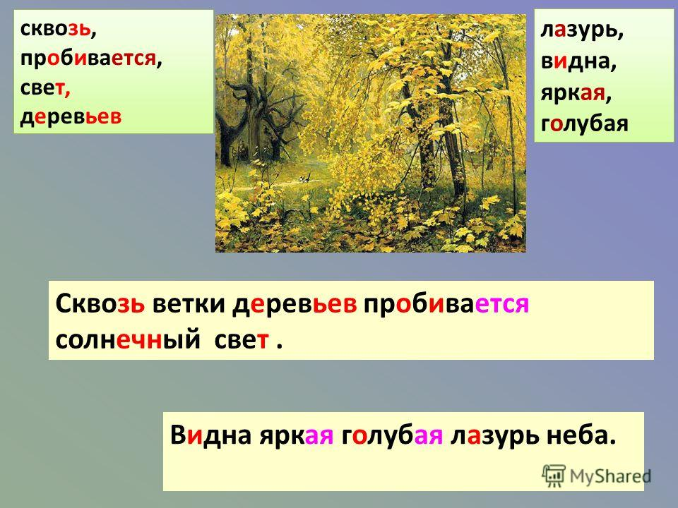 Сквозь ветки деревьев пробивается солнечный свет. Видна яркая голубая лазурь неба. сквозь, пробивается, свет, деревьев лазурь, видна, яркая, голубая