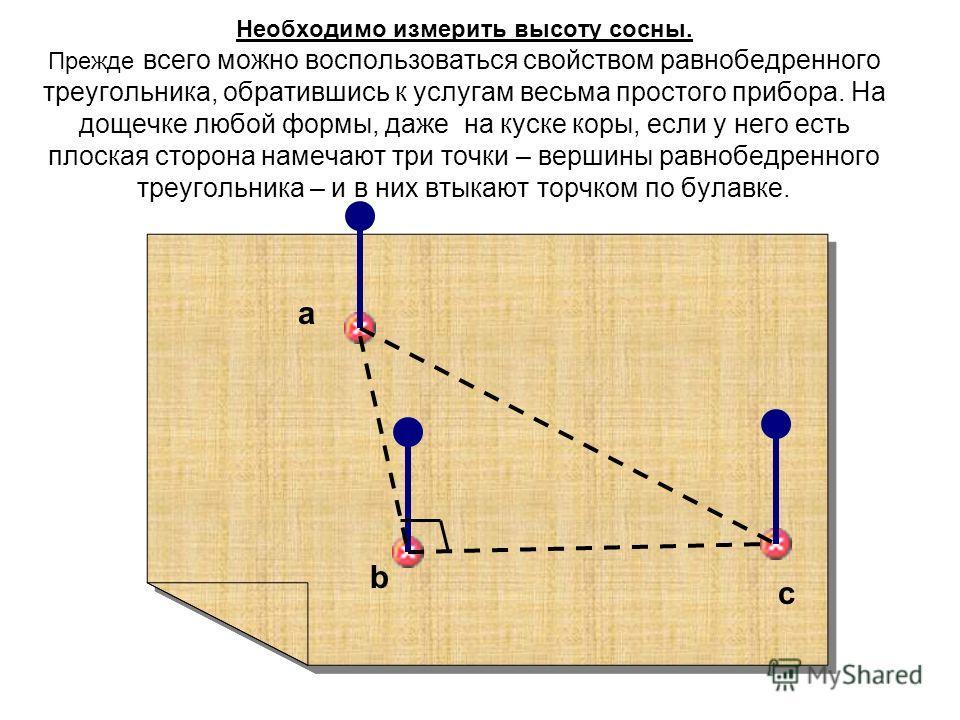 Необходимо измерить высоту сосны. Прежде всего можно воспользоваться свойством равнобедренного треугольника, обратившись к услугам весьма простого прибора. На дощечке любой формы, даже на куске коры, если у него есть плоская сторона намечают три точк