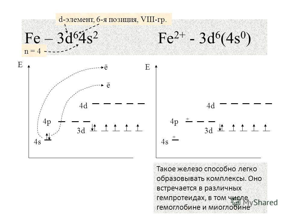 19 Fe – 3d 6 4s 2 Fe 2+ - 3d 6 (4s 0 ) n = 4 d-элемент, 6-я позиция, VIII-гр. 4s4s 4p4p 4d4d 3d 4s4s 4p4p 4d4d + + ē ē Такое железо способно легко образовывать комплексы. Оно встречается в различных гемпротеидах, в том числе гемоглобине и миоглобине