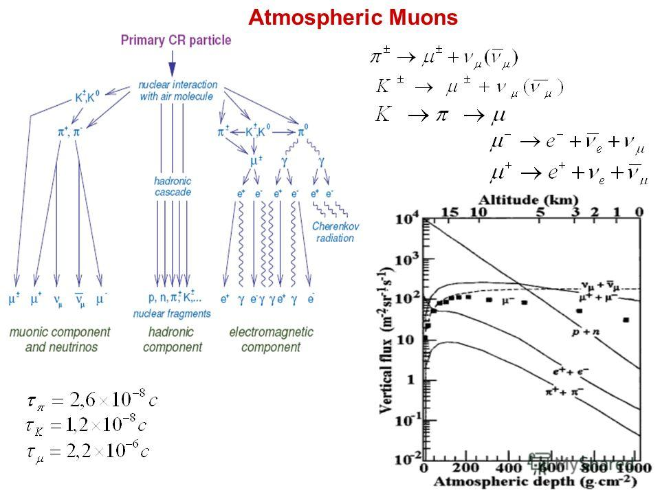 2 Atmospheric Muons
