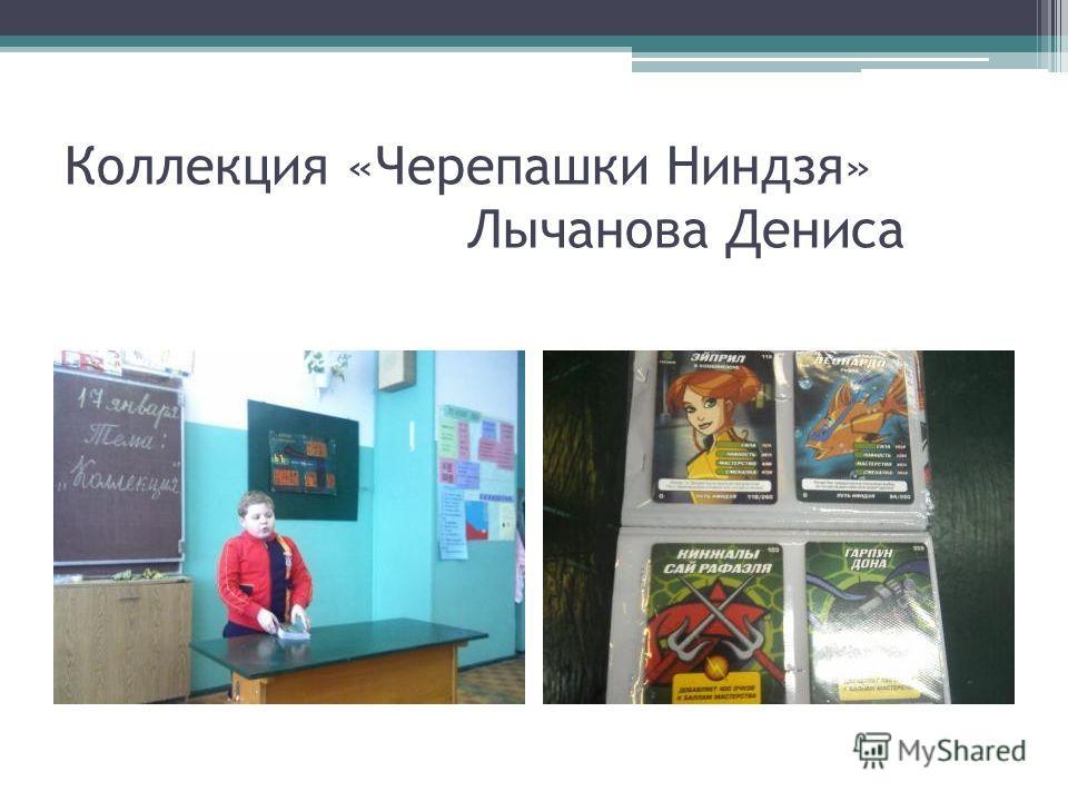 Коллекция «Черепашки Ниндзя» Лычанова Дениса