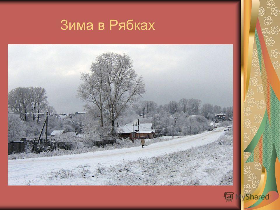 Зима в Рябках