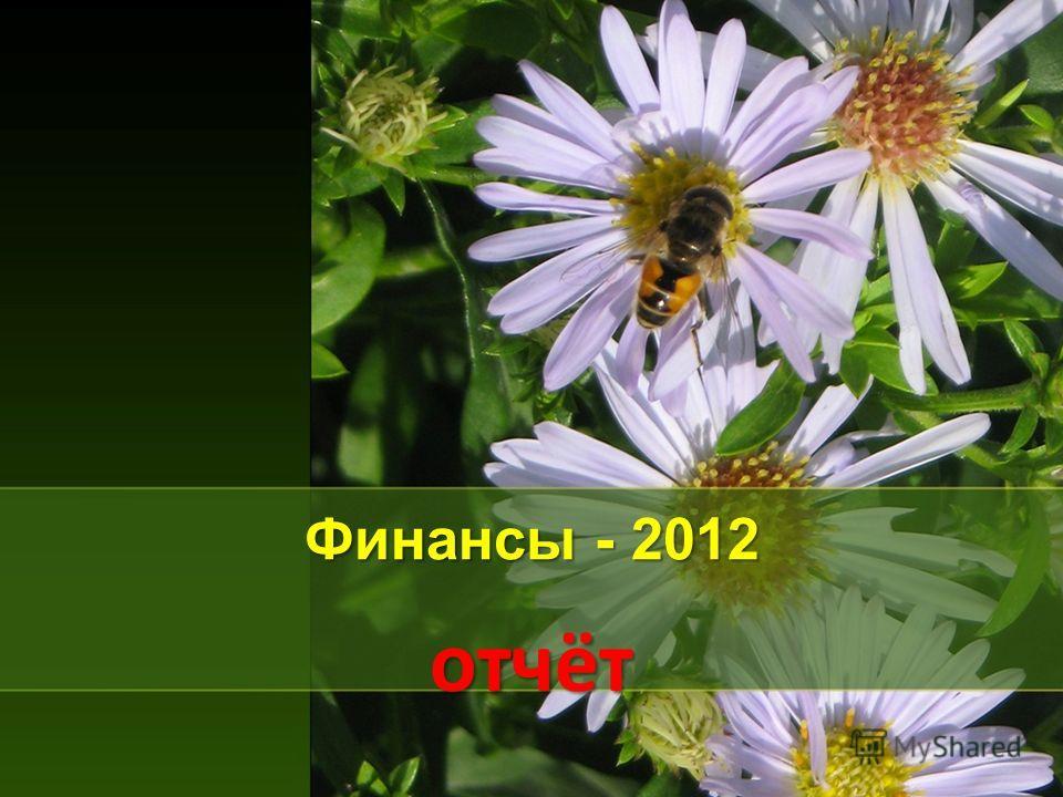 Финансы - 2012 отчёт
