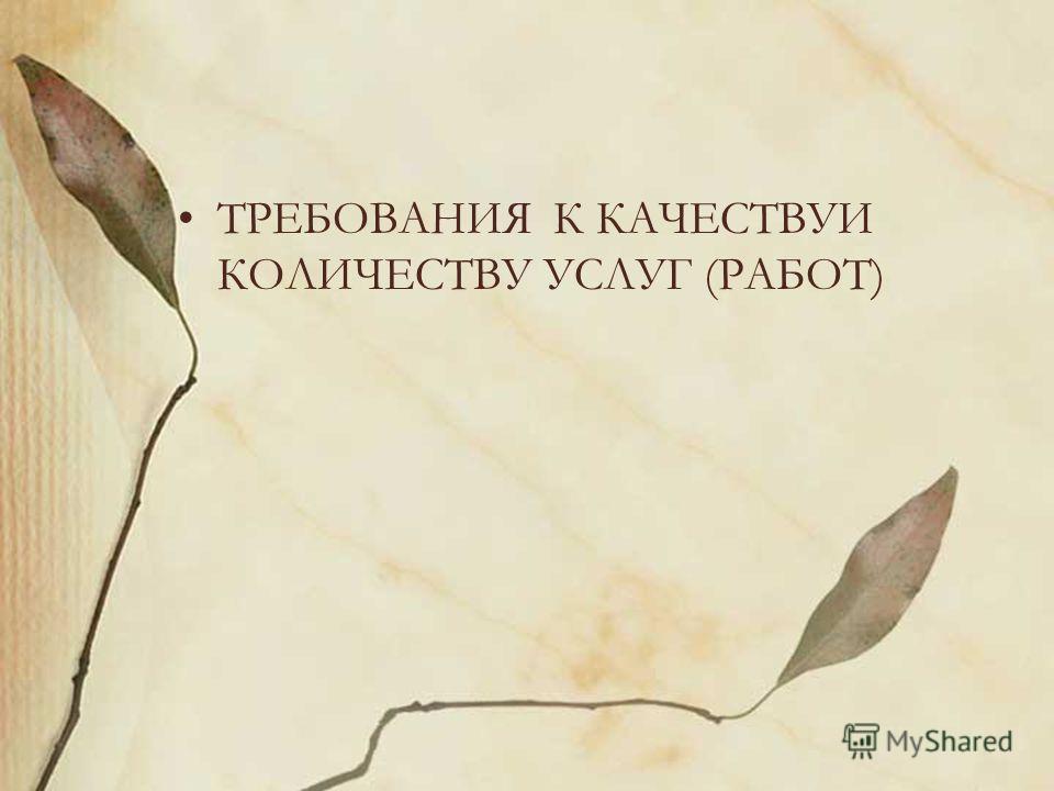 ТРЕБОВАНИЯ К КАЧЕСТВУИ КОЛИЧЕСТВУ УСЛУГ (РАБОТ)