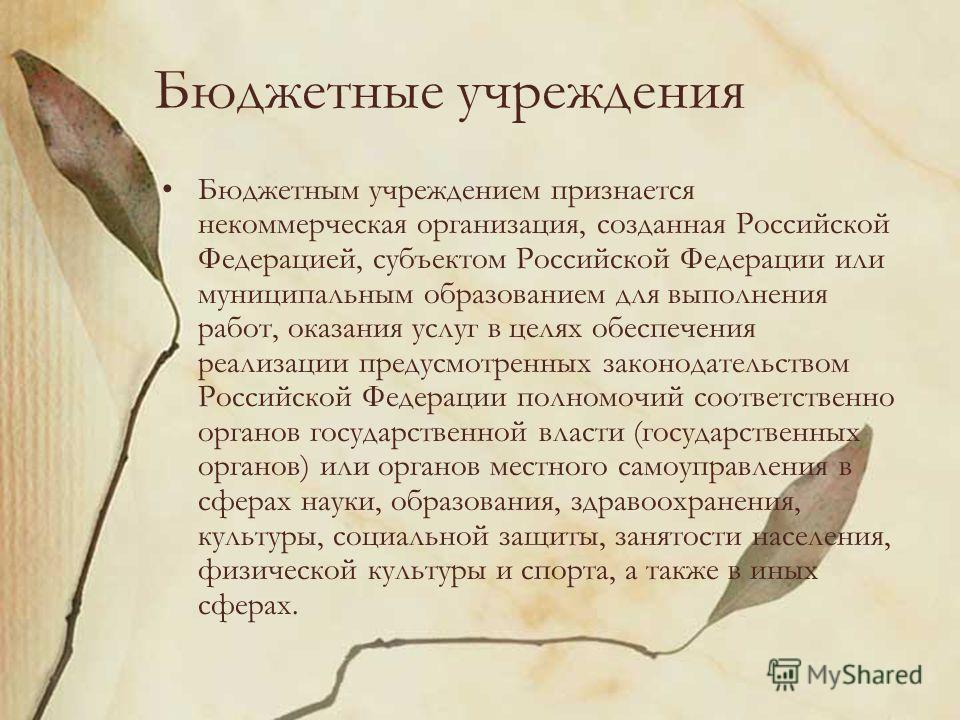 Бюджетные учреждения Бюджетным учреждением признается некоммерческая организация, созданная Российской Федерацией, субъектом Российской Федерации или муниципальным образованием для выполнения работ, оказания услуг в целях обеспечения реализации преду