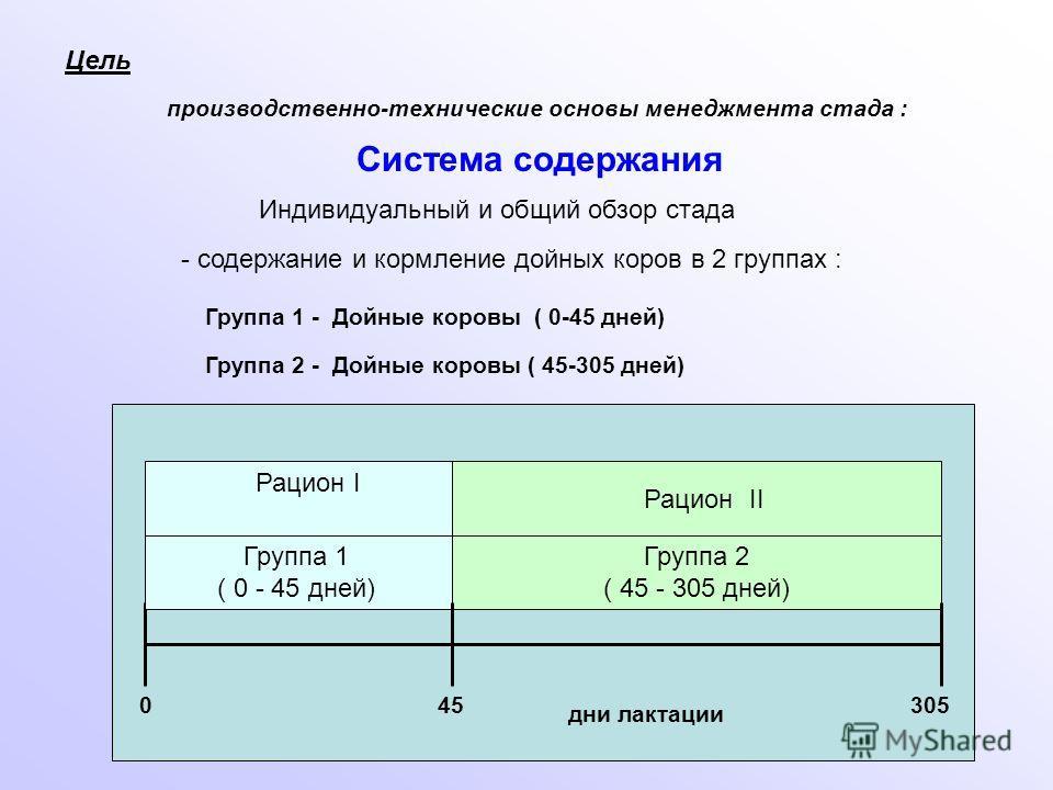 Цель производственно-технические основы менеджмента стада : Система содержания - содержание и кормление дойных коров в 2 группах : Группа 1 - Дойные коровы ( 0-45 дней) Группа 2 - Дойные коровы ( 45-305 дней) 045305 дни лактации Группа 1 ( 0 - 45 дне
